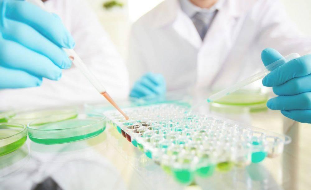 biohimicheskoe-issledovanie-krovi