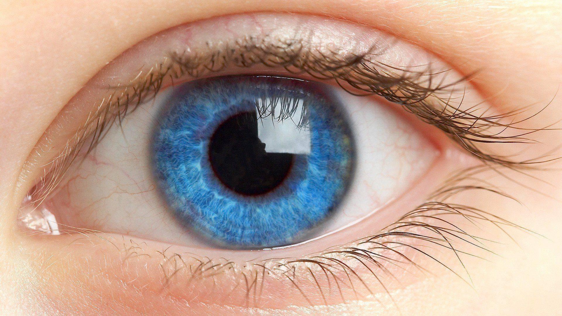 Что нужно делать при глазном давлении